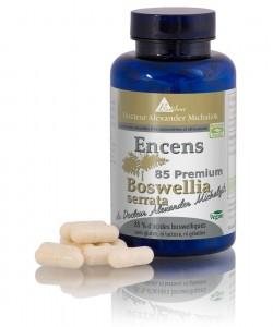 Encens boswellia BS-85