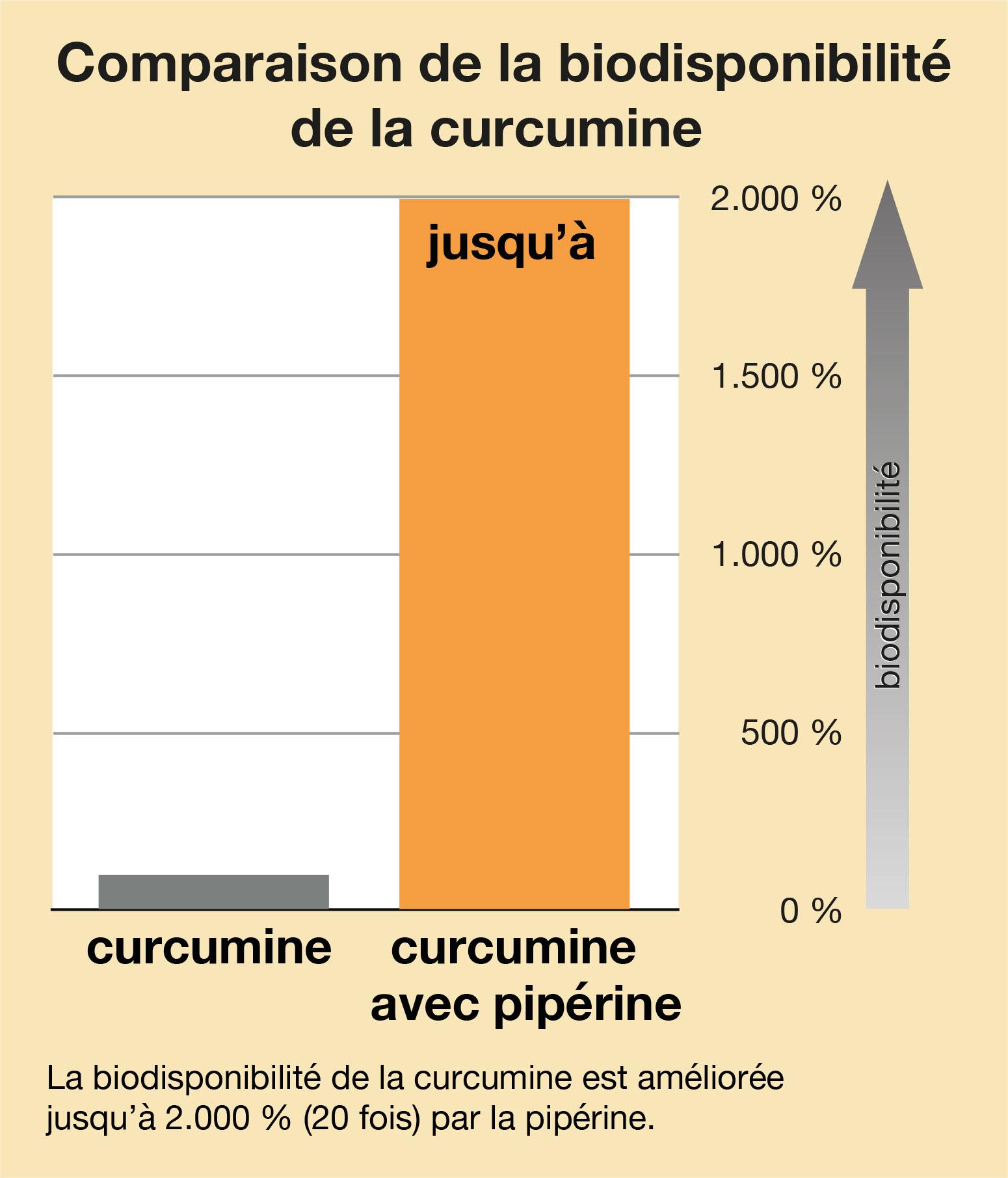 Curcumine biodisponibilité