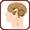 Cerveau et performance mentale